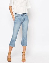 Warehouse Cropped Kick Flare Stone Cream