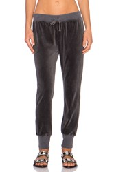 Pam And Gela Betsee Velour Sweatpant Charcoal