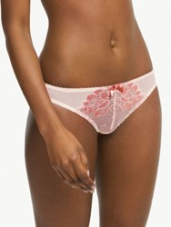 And Or Valentina Lace Brazilian Briefs Shell Slate Rose