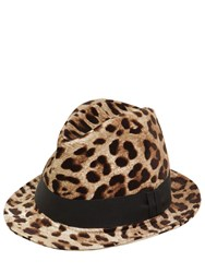 Dolce And Gabbana Leopard Print Cotton Blend Hat